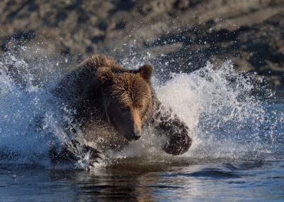 ALASKA-4-17-Aug_2012_00950