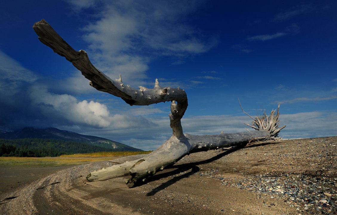 Alaska-6-11-Sept-2011_0257