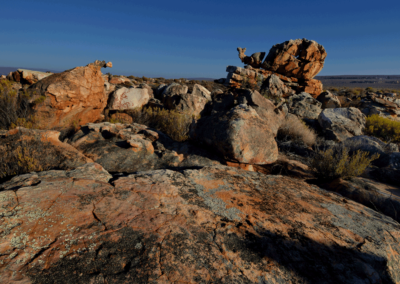 Kagga-Kamma-18-21-Jan_-2018_00433D