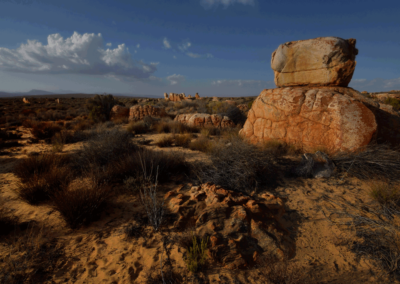 Kagga-Kamma-18-21-Jan_-2018_00592D