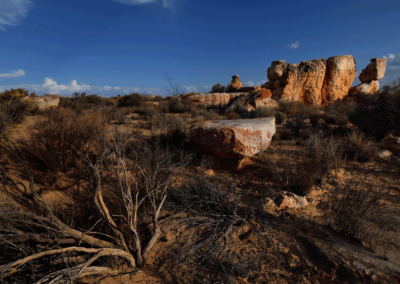 Kagga-Kamma-18-21-Jan_-2018_00614D