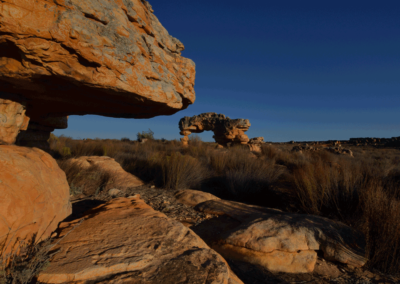 Kagga-Kamma-18-21-Jan_-2018_00727D