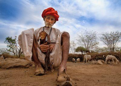 CNP-Leopards&Shepherds-India00007